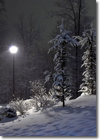 Narnian landscape with lamppost